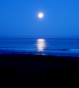 Moonset Gold Beach
